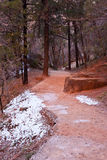 Red hiking path in Zion's National Park. Red rocks and snow on a hiking path during the winter in Zion's National Park Royalty Free Stock Photos