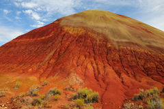 Red hill and desert plants Stock Images