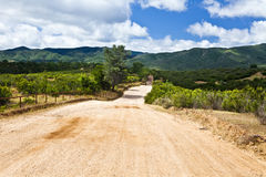 Red Hill Road. Winds through Los Padres National Forest in California Royalty Free Stock Image