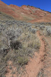 Red Hills Rut-Kelly Wyoming Stock Photography