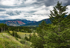 Red Hills in Wyoming. The Red Hills in the distance in the canyon where the Gros Ventre River flows Royalty Free Stock Photos