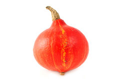 Red hokkaido pumpkin on white isolated background Stock Photography
