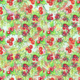 Red holly berries. Hand drawn watercolor pencils seamless pattern, Christmas arrowhead plant, red holly berries vector illustration