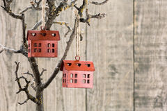 Red homes ornament on branch Royalty Free Stock Photography