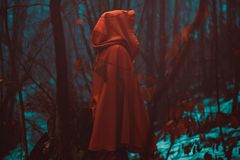 Red hooded figure in magical forest Royalty Free Stock Photos