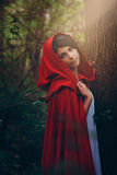 Red hooded woman Stock Photos