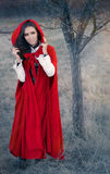 Red Hooded Woman Fairytale Portrait Stock Image