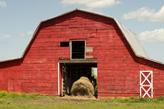 Red Horse Barn Royalty Free Stock Images