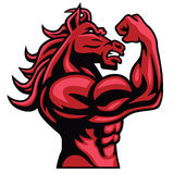 Red Horse Bodybuilder Posing His Muscular Body  Vector Mascot. Red Horse Bodybuilder Posing His Muscular Body  Vector Vector Mascot Stock Images