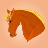 The red horse stallion head vector Royalty Free Stock Photos