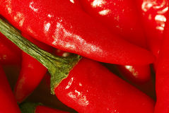 Red Hot!. Close up of Red hot chilis Stock Photography