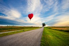Red hot air balloon in the shape of a heart over cosmos flower royalty free stock photography