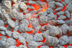 Red hot burning charcoal Stock Photos