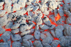 Red hot burning charcoal Royalty Free Stock Images
