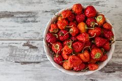 Red Hot Cherry Peppers Stock Photo