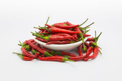 Red hot chile Royalty Free Stock Images