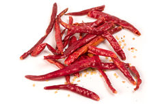 Red hot chile pepper. Red hot dried chile pepper isolated on white background Stock Image