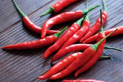Red hot chile pepper on wood background. View royalty free stock images