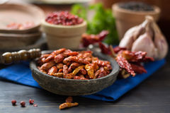 Red hot chili cayenne peppers dried, variety - spicy ingredient Royalty Free Stock Photos