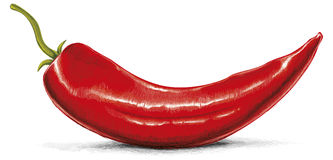 Red Hot Chili Royalty Free Stock Photos