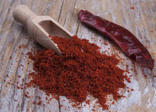 Red Hot Chili Royalty Free Stock Images