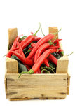 Red hot chili and green peppers jalapeno in a wooden box Royalty Free Stock Images