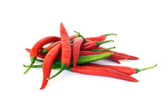 Red Hot Chili Papper Royalty Free Stock Image