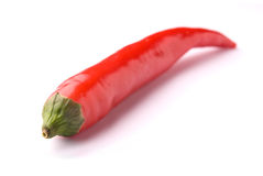 Red hot chili pepper. Isolated on white, studio shot Royalty Free Stock Image