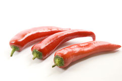 Red hot chili pepper. On a white background Stock Images