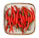 Red hot chili pepper Royalty Free Stock Photography