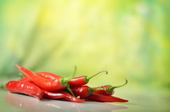 Red hot chili pepper Stock Images