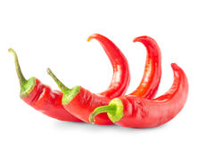 Red hot chili pepper Royalty Free Stock Images