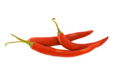 Red hot chili pepper. Three red hot peppers on the white background stock photography