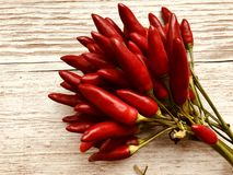 Red chili pepper bunch stock photo