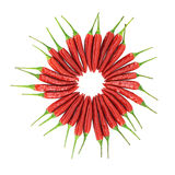 Red hot chili pepper circle Stock Images