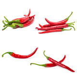 Red hot chili pepper collage Royalty Free Stock Images