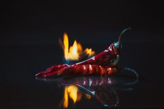 Red hot chili pepper on fire on black background Stock Photo
