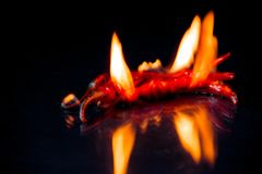 Red hot chili pepper on fire  on black background Royalty Free Stock Photos