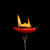 Red Hot Chili Pepper on Fire Royalty Free Stock Images