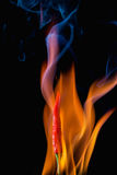 Red hot chili pepper with flame Stock Photography