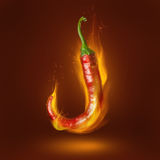 Red hot chili pepper with flame Stock Photo