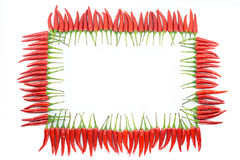 Red hot chili pepper frame Royalty Free Stock Image