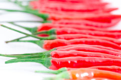 Red hot chili pepper. Group isolated on white background Royalty Free Stock Photos