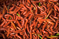 Red hot chili pepper II. Red chili pepper at farmers market in Bangkok, Thailand Stock Images