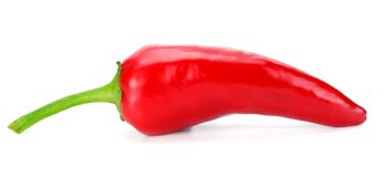 Red hot chili pepper isolated on white background royalty free stock photos