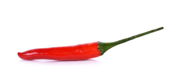 Red hot chili pepper isolated on a white background Royalty Free Stock Photography