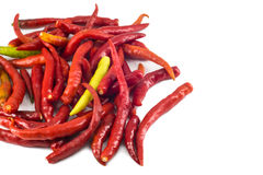 Red hot chili pepper isolated Royalty Free Stock Images