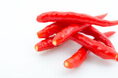 Red hot chili pepper. Isolated on white background Royalty Free Stock Photography