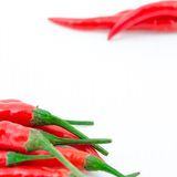 Red hot chili pepper. Isolated on white background Royalty Free Stock Photo
