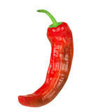 Red hot chili pepper isolated on a white background Stock Photos